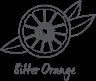 logo-sole-orange